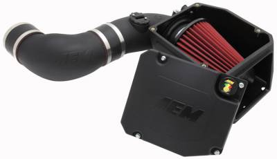 AIR INTAKES - AIR INTAKE KITS - AEM Induction - AEM Induction AEM Brute Force HD Intake System 21-9033DS