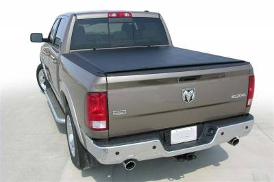 EXTERIOR ACCESSORIES - BED CAPS - Access Cover - Access Cover Ram 1500 Quad Cab/Reg. Cab 6ft.4in. Bed 94179